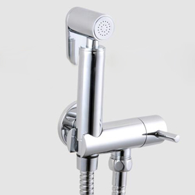 Contemporary Solid Brass Bidet Tap Chrome Finish DS002